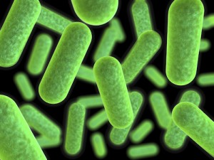 Dycor-Microbes-for-Oil